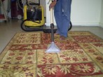 carpet shampooing and cleaning
