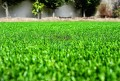 Artificial Grass suppliers in UAE | Hadir Projects&Env.Systems L.L.C