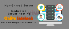 Pick Dedicated Server Hosting by Onlive Infotech Company