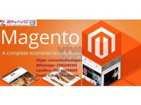 Affordable Magento Website Design and Development Services