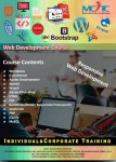 Advanced Web Designing & Web Development Course in Dubai!