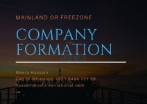 Business Formation at Freezone