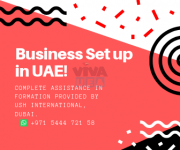 Business in UAE Setup