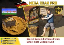 Mega Scan Pro 2019 gold and metal detector