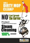 Deep/Steam Cleaning Services (Move-in/out)