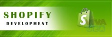 Top Shopify development services by best web development company