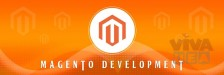 Top magento development services by the best web development company