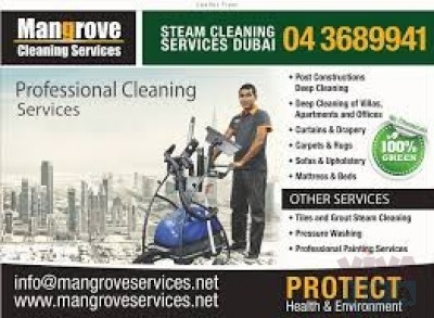 Curtains, Carpet, Sofa, Mattress, Oven Steam Cleaning