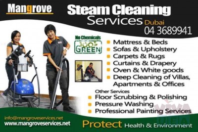 Carpet, Curtain, Sofa, Mattress, Oven Steam Cleaning - Sanitization