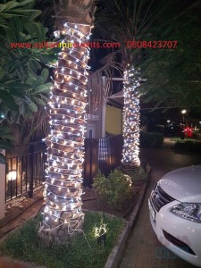 decorate your home, malls, streets with decoration lights