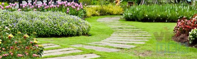 Find A Best Company Working For Landscape Maintenance In Dubai ?