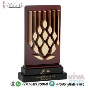 Crystal Acrylic Trophies Supplier for Corporate Company in Dubai