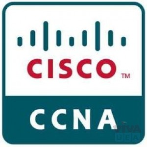 CCNA Online Classes at Vision Institute. Call 0509249945