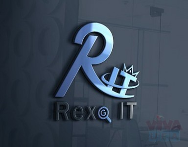 Professional IT Service Provider Company | Rexo IT
