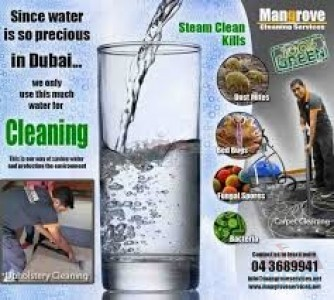 Deep/Steam Cleaning Services - Office, Villa, Apartment