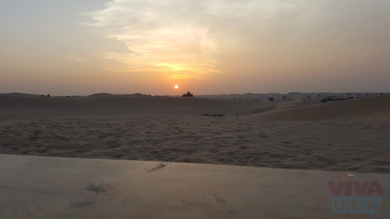 Desert Leap Safari Dubai Adventures | Most Authentic Desert Safari In Dubai, Respectful services at best