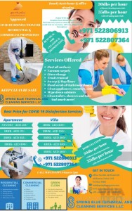 SPRING BLUE TECHNICAL AND CLEANING SERVICES