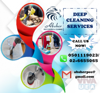 CLEANING SERVICES WITH SPECIAL LIMITED OFFER