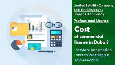 Low Cost Trade License with Visa Allocation