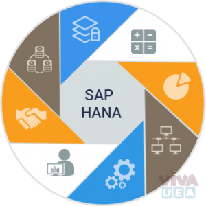 SAP S/4 HANA Finance Course Training at VISION INSTITUTE 0509249945
