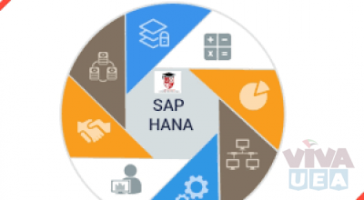 SAP HANA Classes In sharjah with best offer call 0503250097