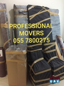 PROFESSIONAL MOVERS 0557800275